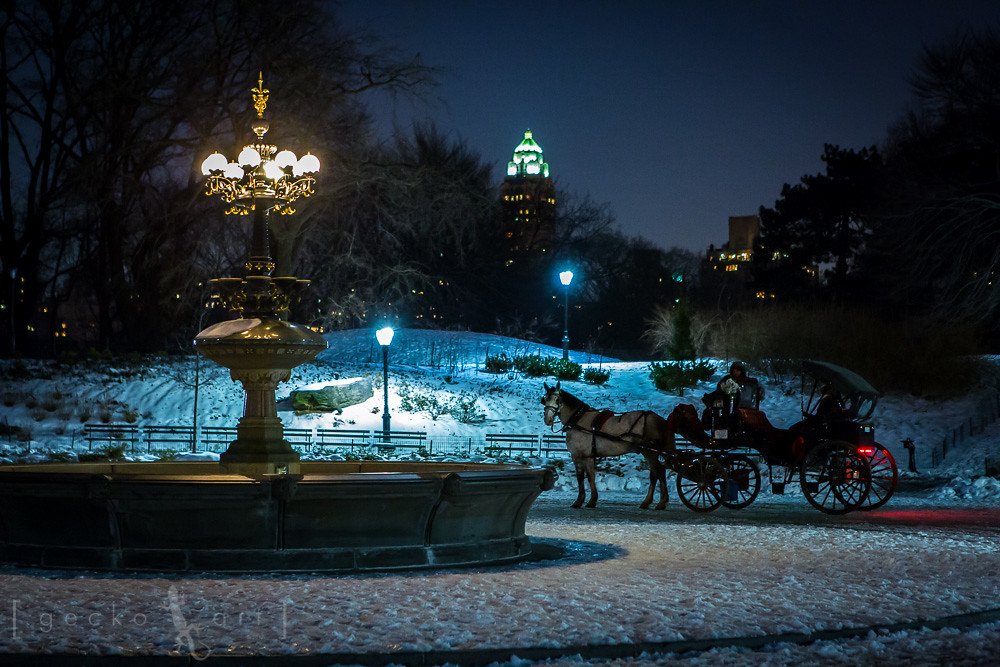 Central Park Nyc Carriage Rides Central Park Carriage Ride in