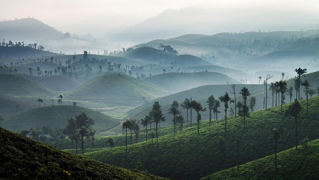 Beautiful Morning @ Valparai | @ Valparai © Mahesh