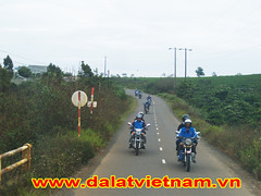 Dalat Bike Tour