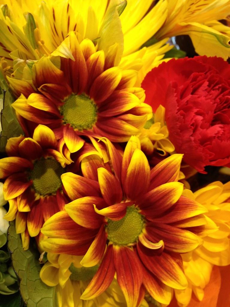 Flowers by Patty Vickn...