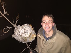 Photo of a man with a nest.