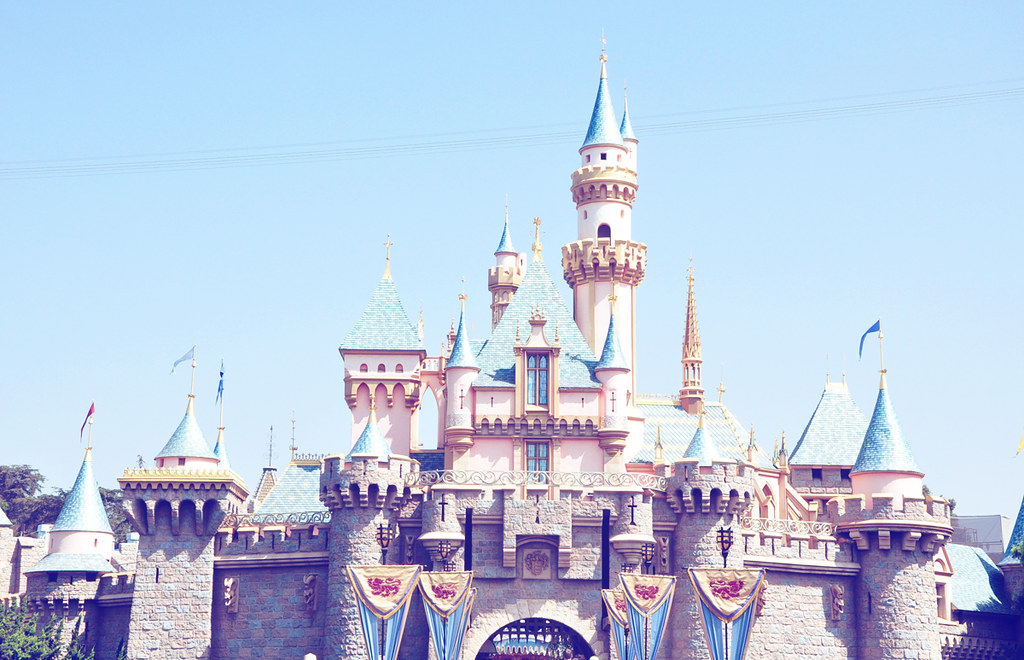 Tumblr Disneyland Castle | www.imgkid.com - The Image Kid ...