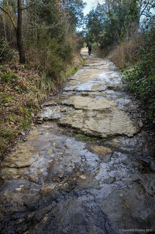 Camino que sube a Cantonigròs desde l'Esquirol