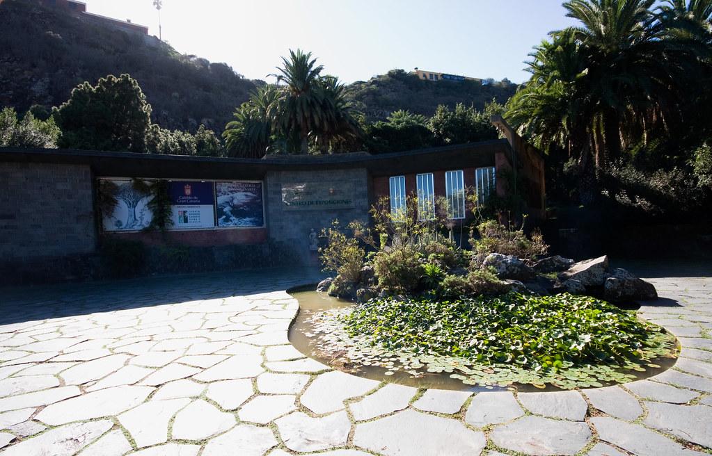 El Jardín Botánico Viera y Clavijo,( Jardín Canario) en La ...