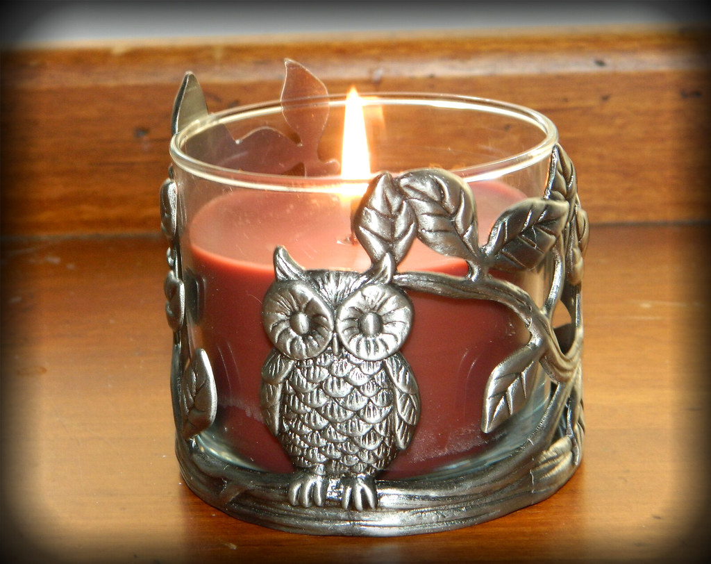 Owl Body And Body Works Owl Candle