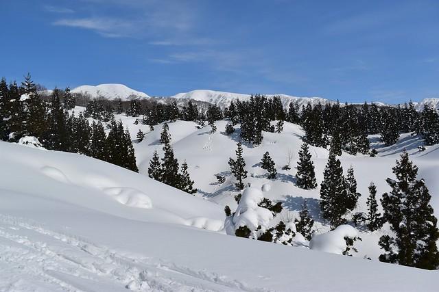 冬の守門岳