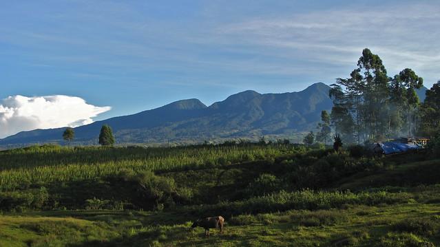 Miarayon, Bukidnon 2011