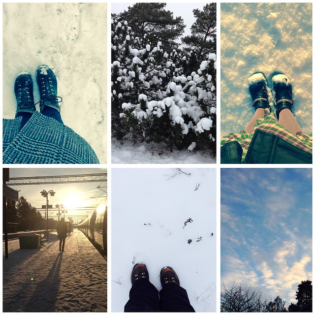 Winter walks 2014