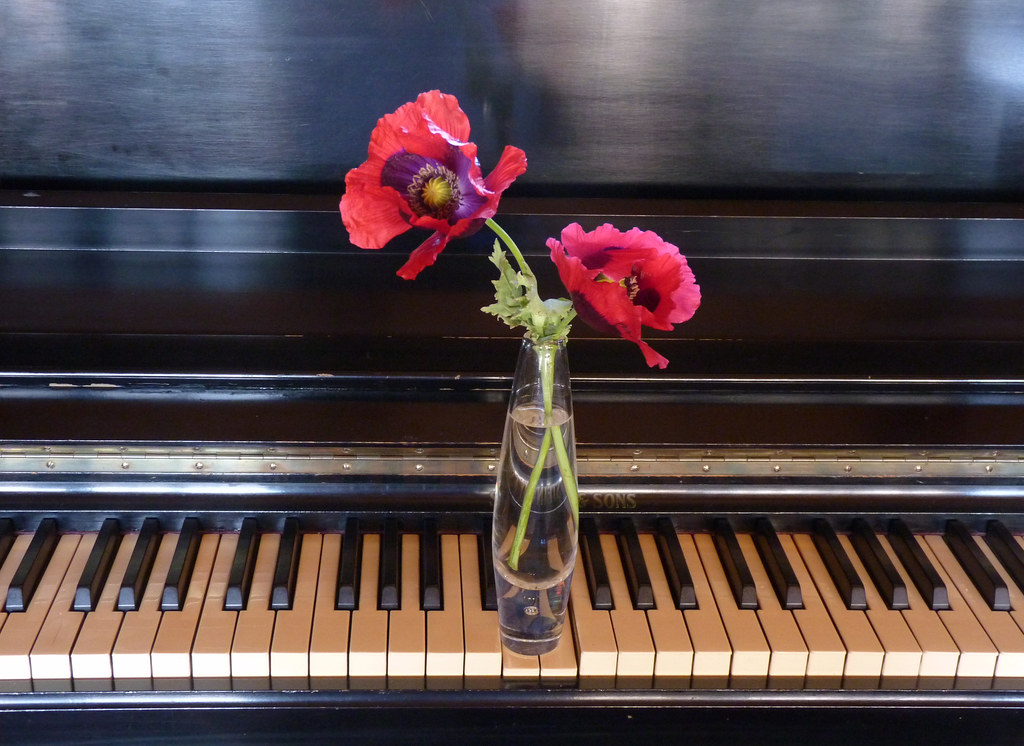 Still Life With Music | In the key of 'P' for piano and ...