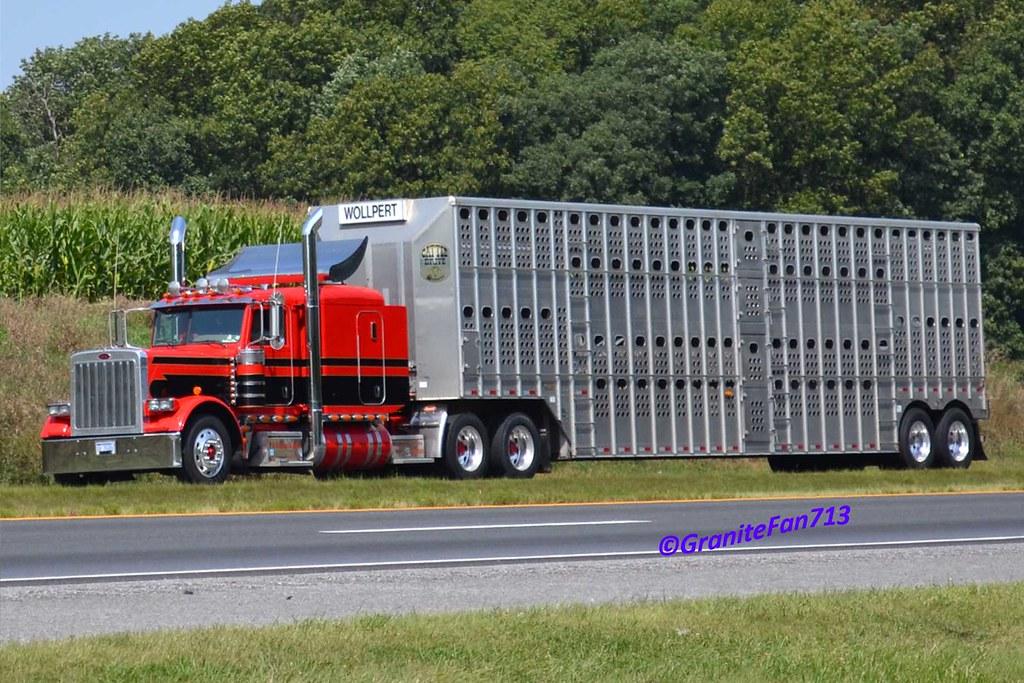 Peterbilt 379 Cattle Hauler Trucks Buses Amp Trains By