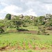 Landscape features in Mt Elgon district