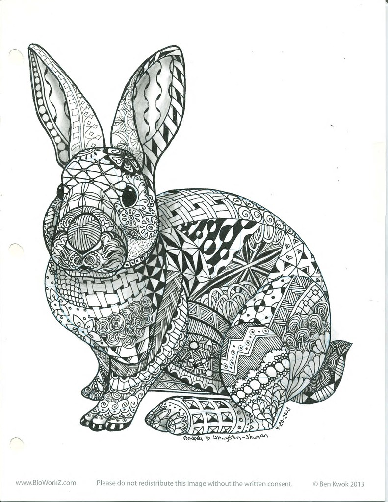 Ornamental Rabbit1 This rabbit