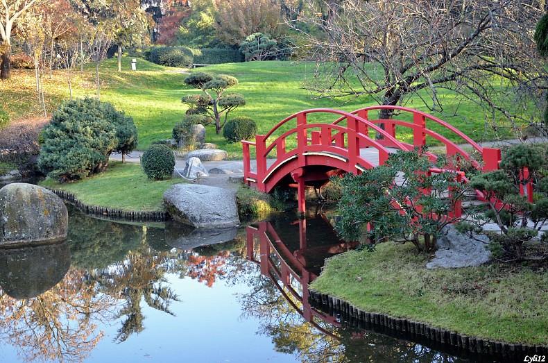 Couleurs d 39 automne au jardin japonais toulouse haute gar for Jardin japonais toulouse