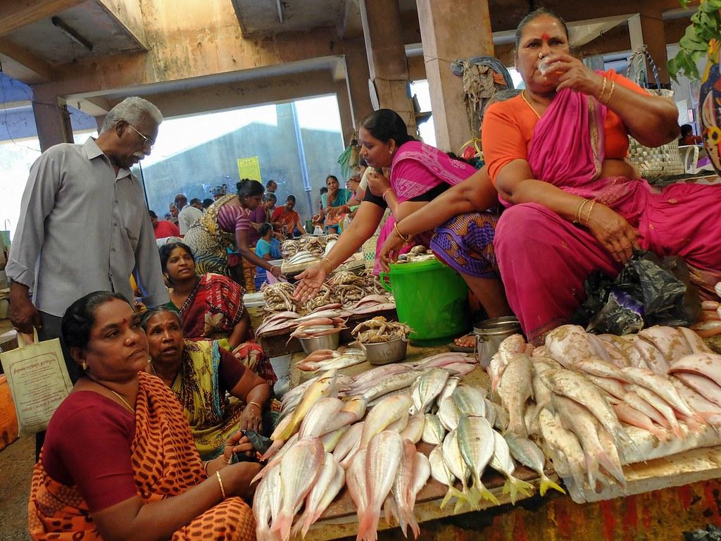 Fish market pondicherry india 2014 fabio campo flickr for White fish market