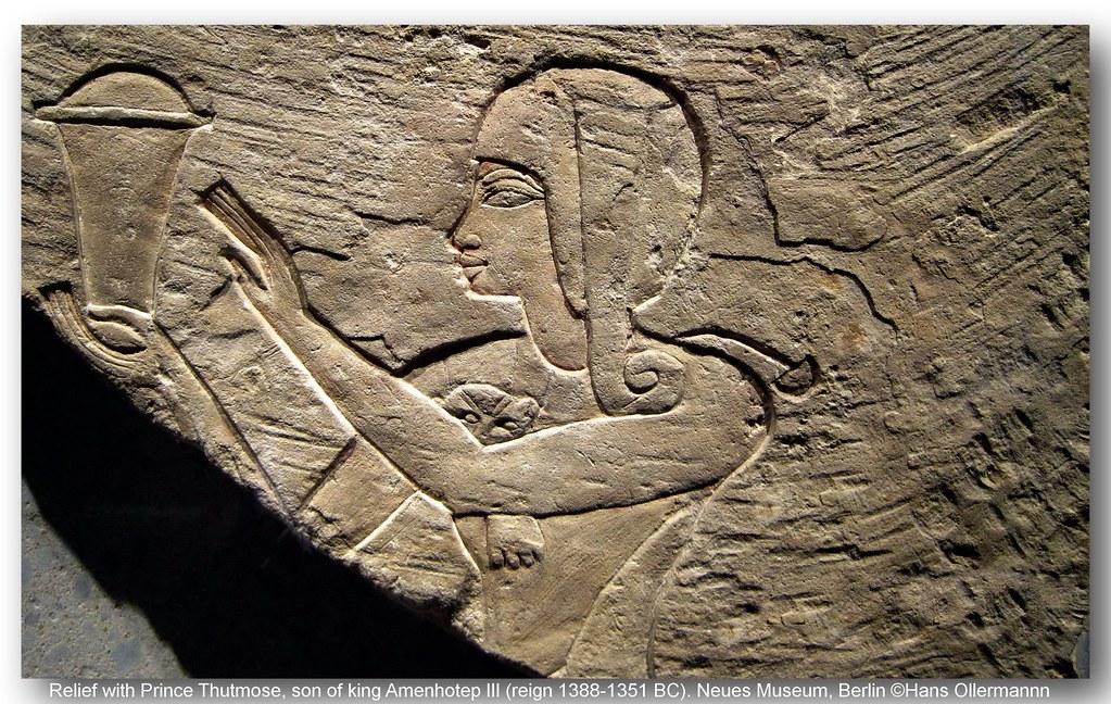 the life ad reign of thutmose iii Thutmose iii (sometimes read as thutmosis or tuthmosis iii, and meaning thoth is born) was the sixth pharaoh of the eighteenth dynastyduring the first twenty-two years of thutmose's reign he was co-regent with his stepmother, hatshepsut, who was named the pharaohwhile he is shown first on surviving monuments, both were assigned the usual royal names and insignia and neither is given.