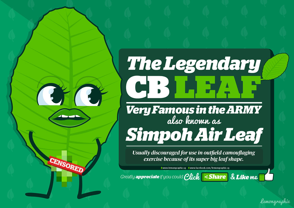 Character Design Job Singapore : The legendary cb leaf character design very famous in