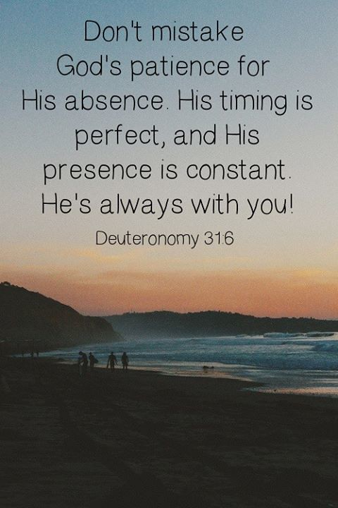Image result for Deuteronomy 3:16