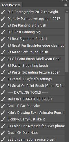 Regular Brushes Tool Preset in my Photoshop