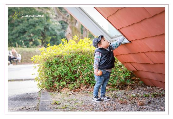 養老公園こどもの国 岐阜県養老町 ロケーション撮影 誕生日記念 男の子 バースデーフォト スタジオ 写真館 おすすめ 人気 出張撮影