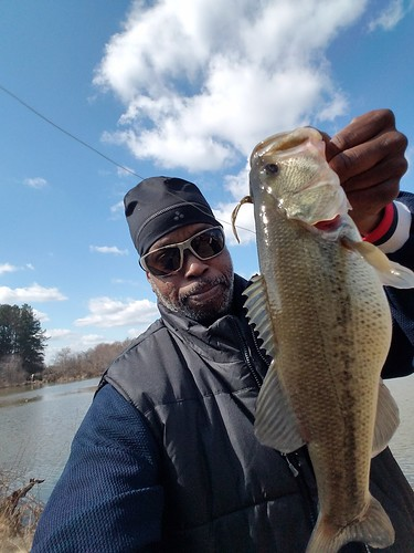 Weekly Fishing Report Archive