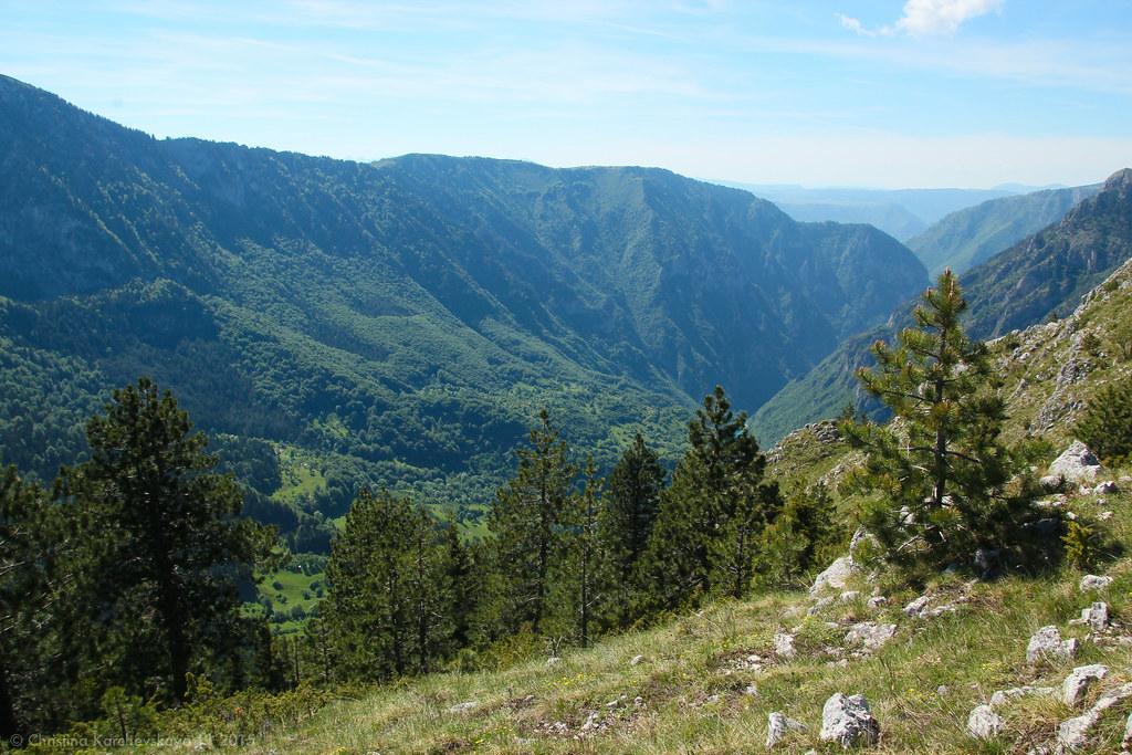 Montenegro [43]: National Park Durmitor