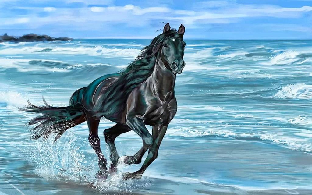 black stallion by selket47 - photo #11