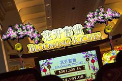 LCA14 Macau Show