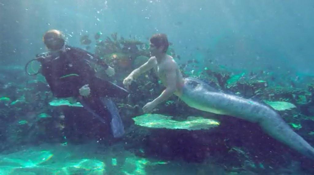 Sirena mako mermaids