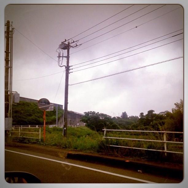 Good Morning! Rain Today...
