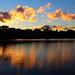 Lake of the Isles Sunset