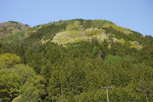 南アルプス公園線からの山