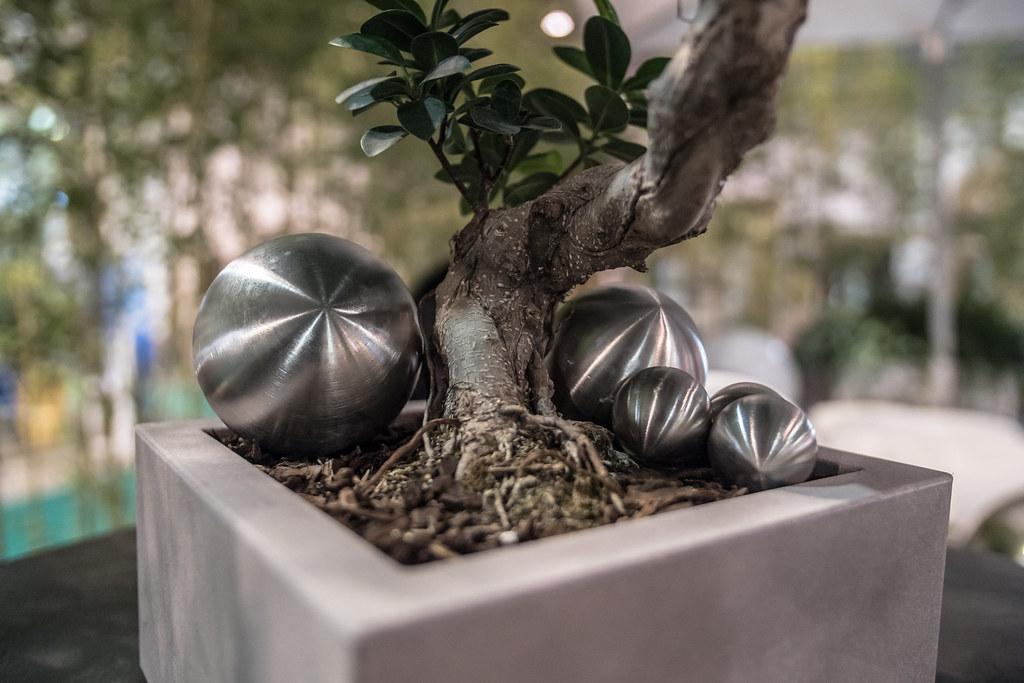 Il giardino da vivere festival dei giardini 2017 flickr - Casting giardini da incubo 2017 ...