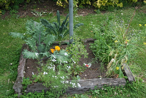 Garden Bed, Clothesline - 2014-01-16
