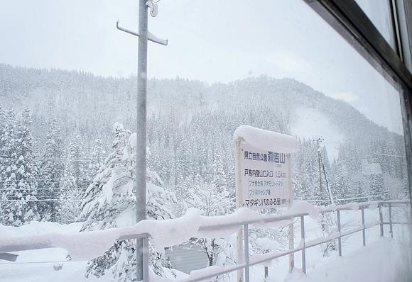 日本森吉山樹冰12