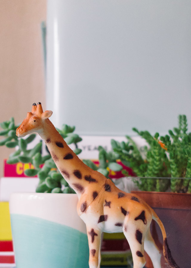 easy ways to bring colour into your home | giraffe toy and plants