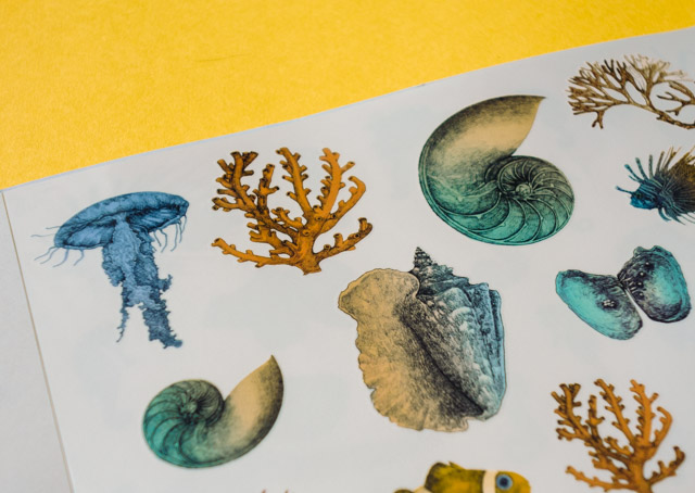 colourful sea life temporary tattoos