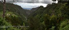 Parte alta do Vale do Faial (Madeira, Portugal)