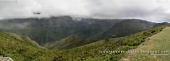 Terras altas da Calheta (Madeira, Portugal)
