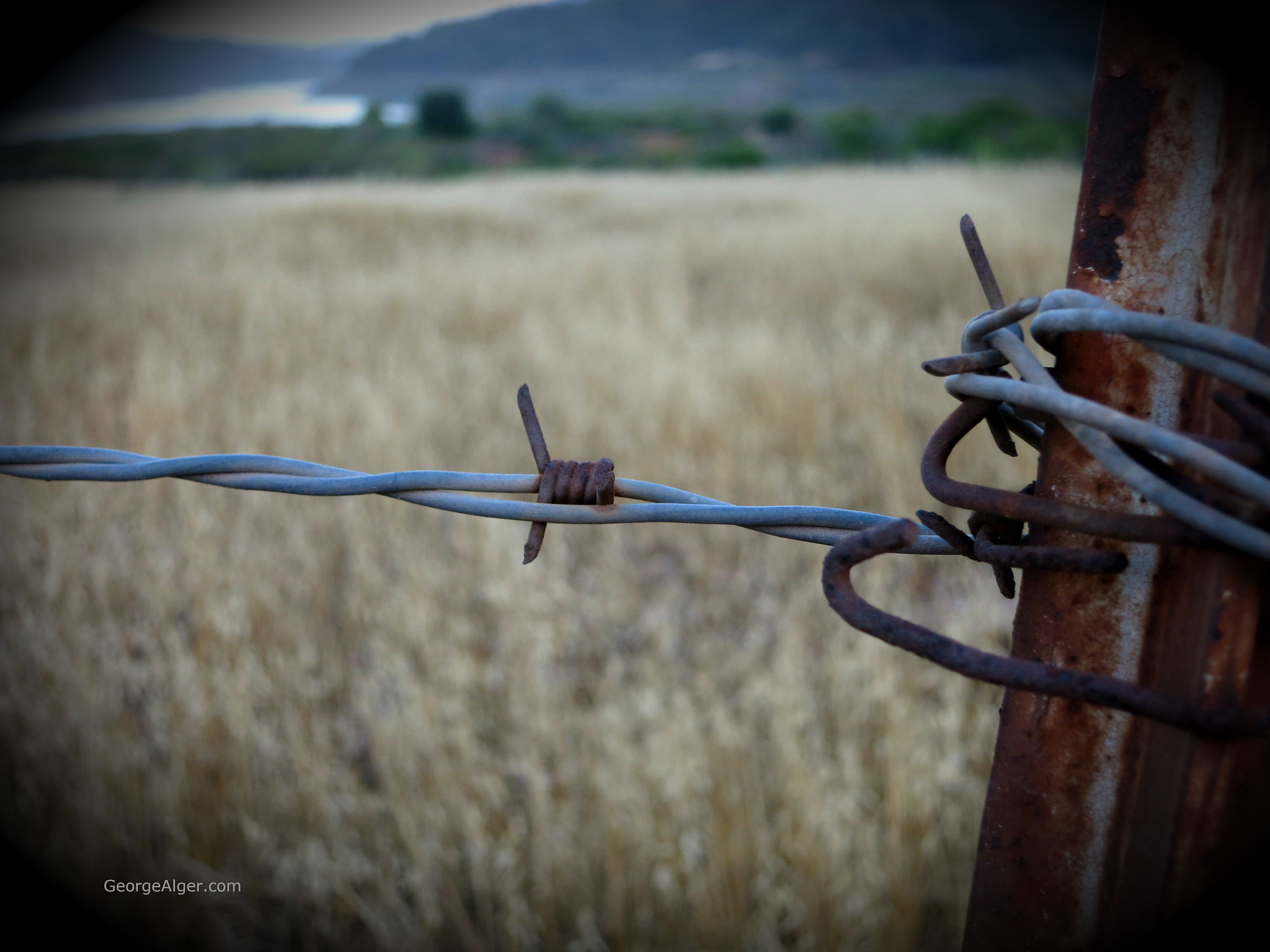 Barbed Wire Lake