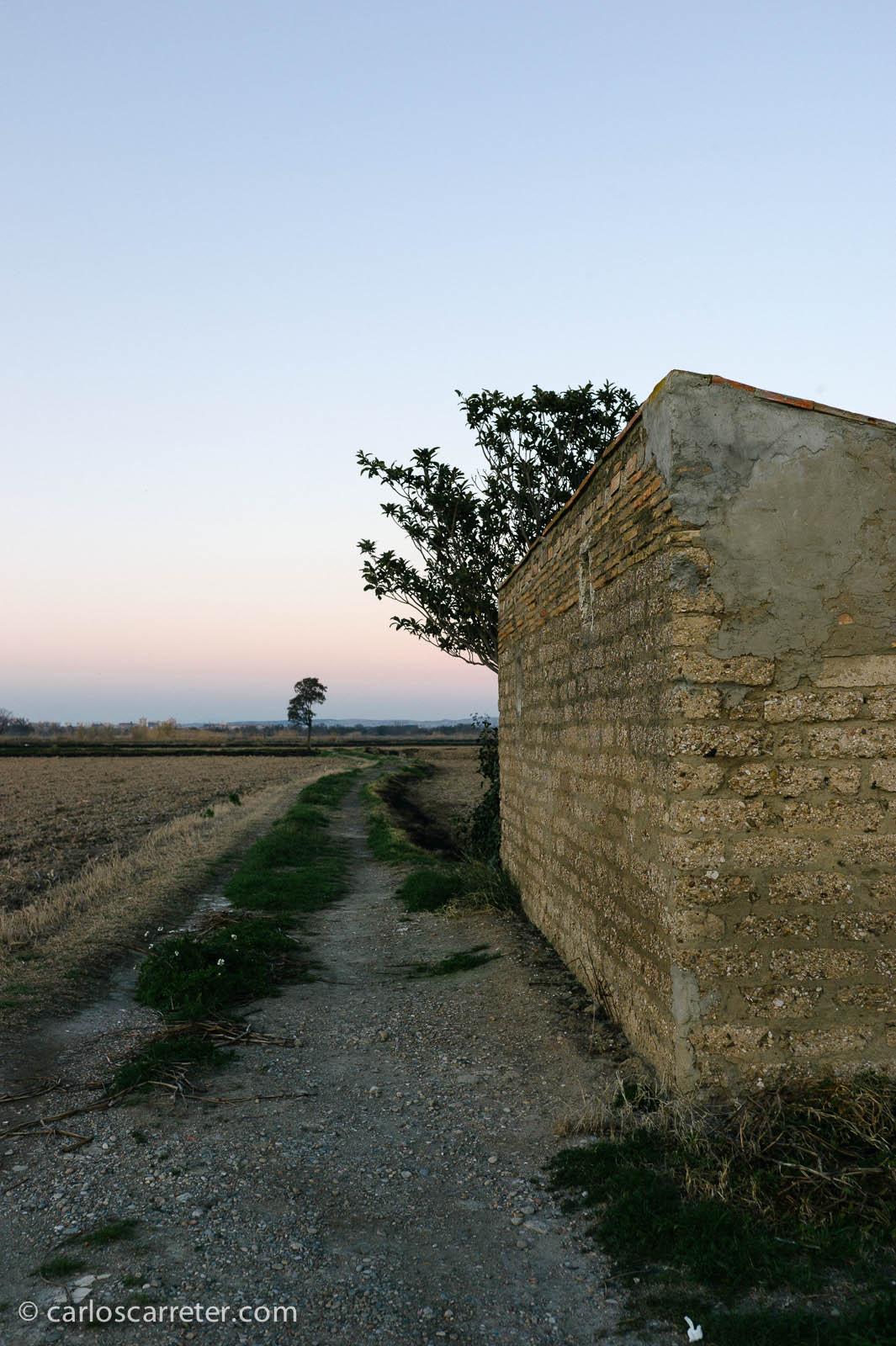 En la huerta de las Fuentes (paisajes)