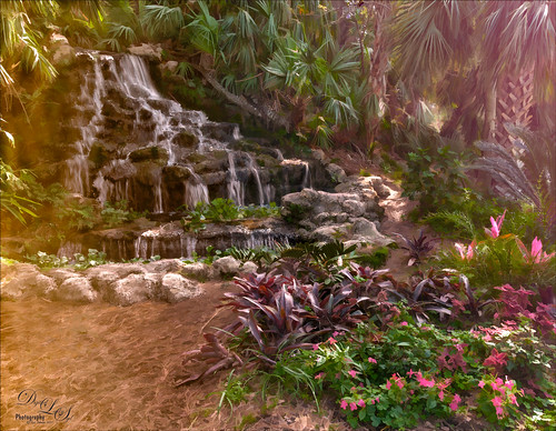 Image of the Waterfall at the Ormond Memorial Art Museum and Gardens