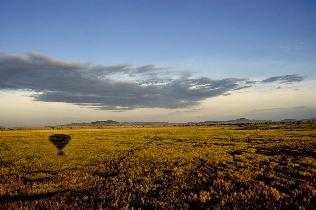 Serengeti Tours From South Africa