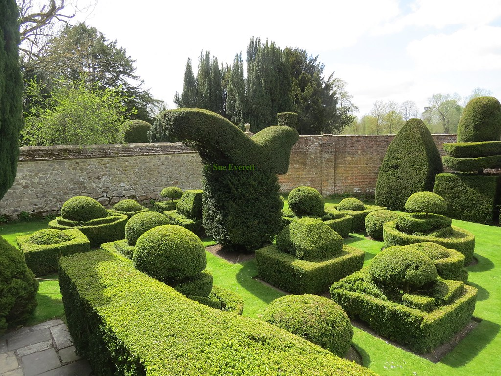 Topiary garden hggt topiary is the horticultural for Topiary garden designs
