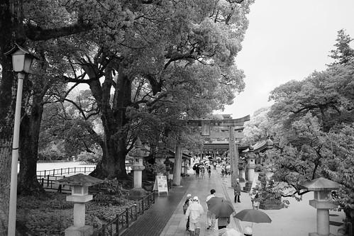 Torii gateway #5