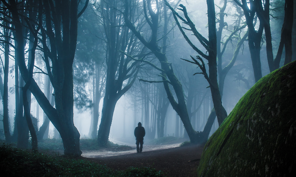 Image Detail For Dark Mysterious Hd Fantasy: Mysterious Forest