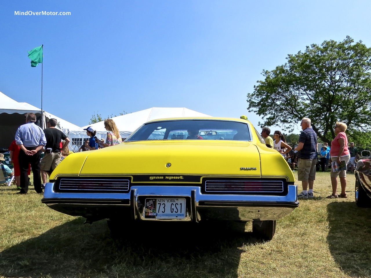 1973 Buick Skylark GS Stage 1 Rear