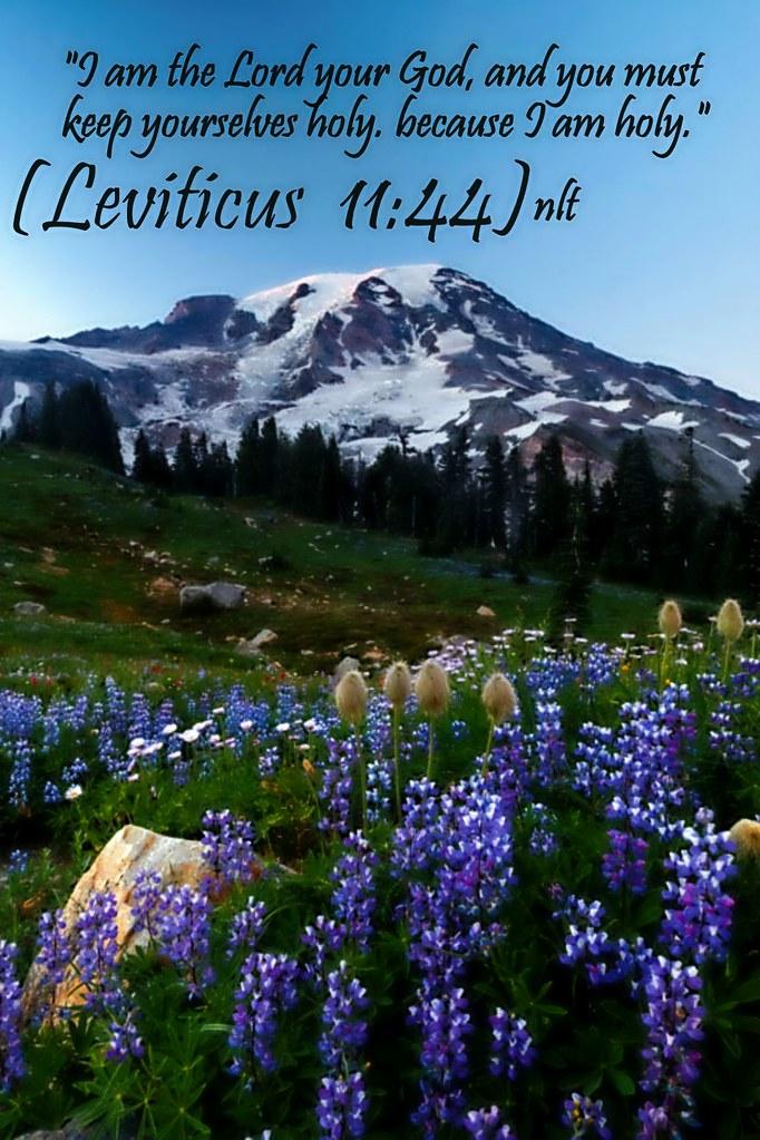 Leviticus 11 44 Leviticus 11 44 Nlt