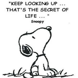 """""""Keep looking up.. that's the secret of life."""" #Snoopy #QO ..."""
