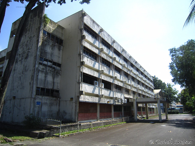 Westlake Primary School 04