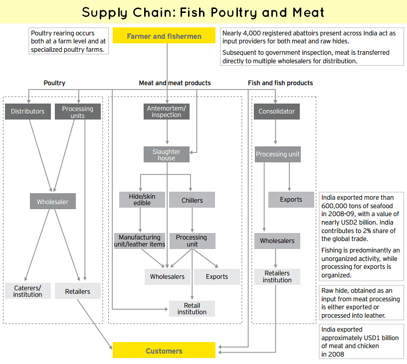 chicken run the poultry supply chain essay
